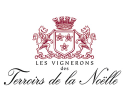 logo-vignerons-terroir
