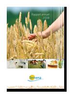 vign_rapport2008